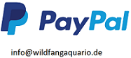 Paypal_onlineshop